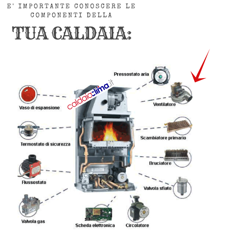 COMPONENTI CALDAIA